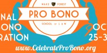 Graphic of Pro Bono Project Banner with National Pro Bono celebration date and website, 'celebrateprobono.org'